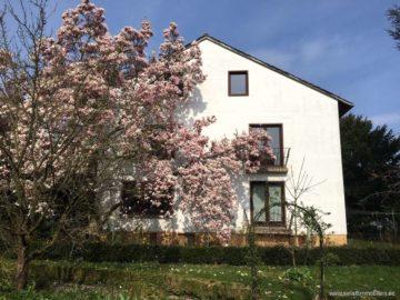 Im Dichter-Viertel gelegen: groß, ruhig, familiär!, 31785 Hameln, Mehrfamilienhaus